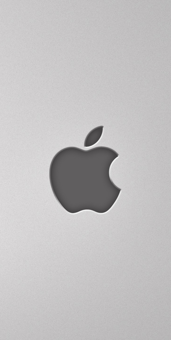 Apple Sistem Destek